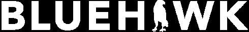 bluehawk consulting logo